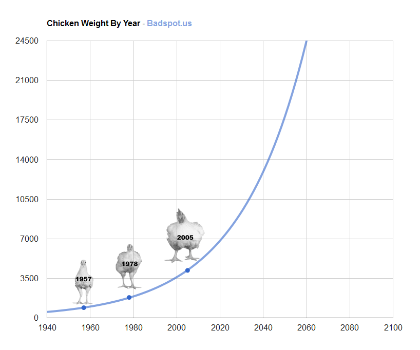 Chicken Weight By Year