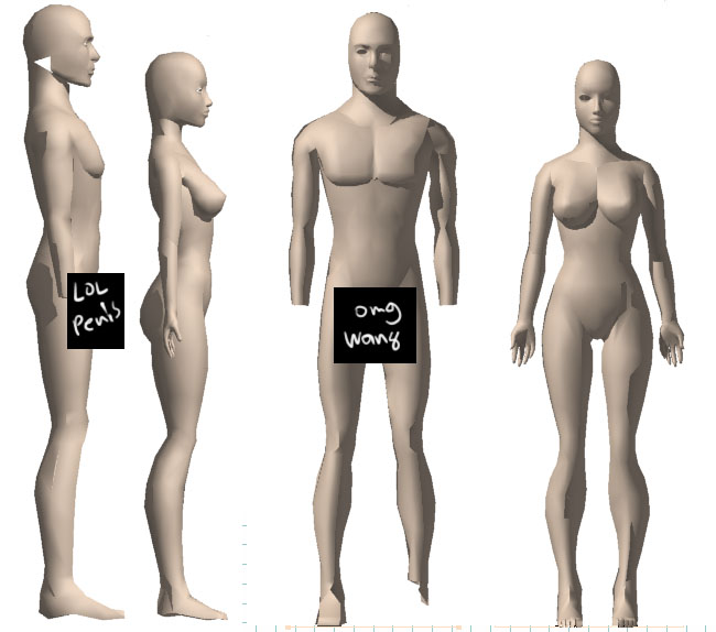 Male and Female Character Models